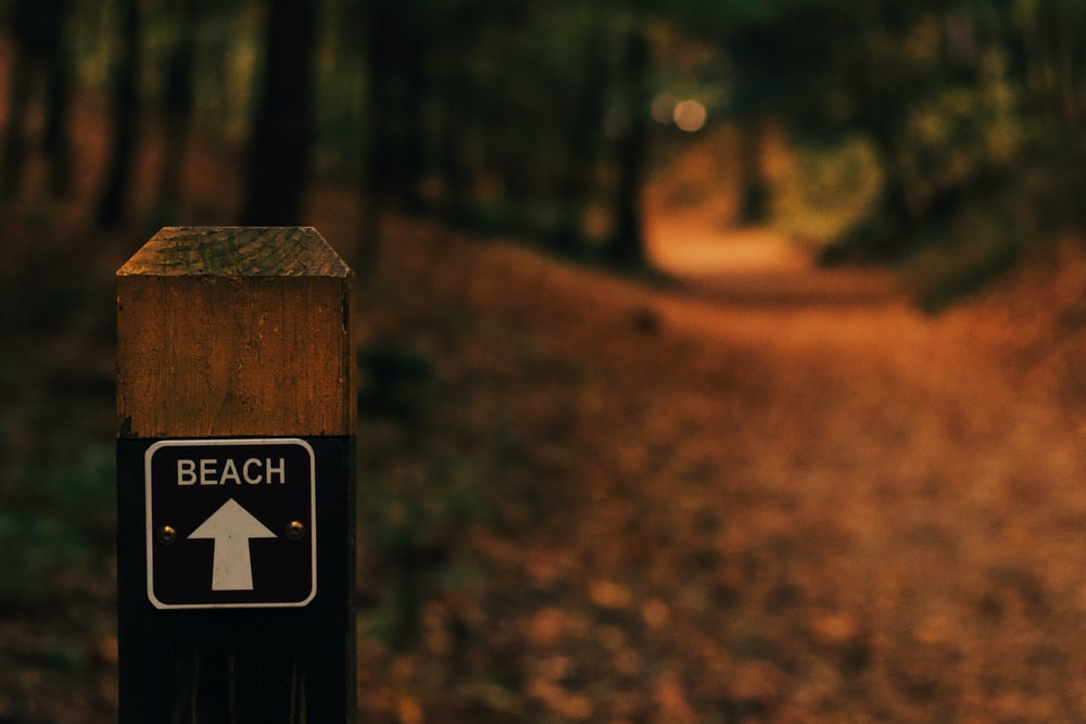 selective focus photography of Beach direction signage