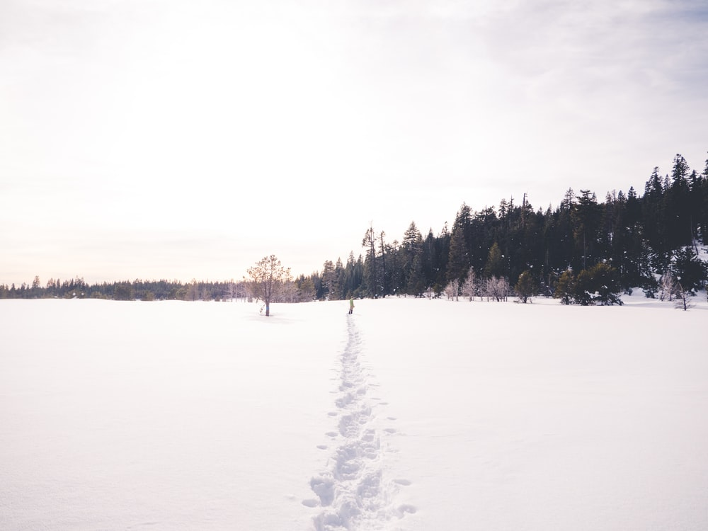man walking on snow during daytime