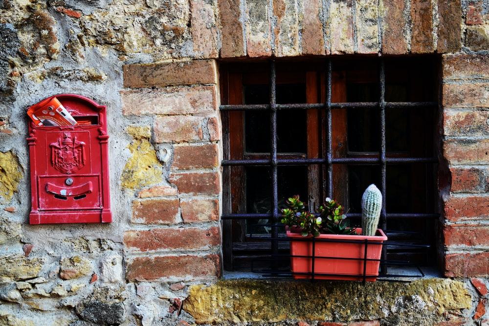 green plants beside window grill