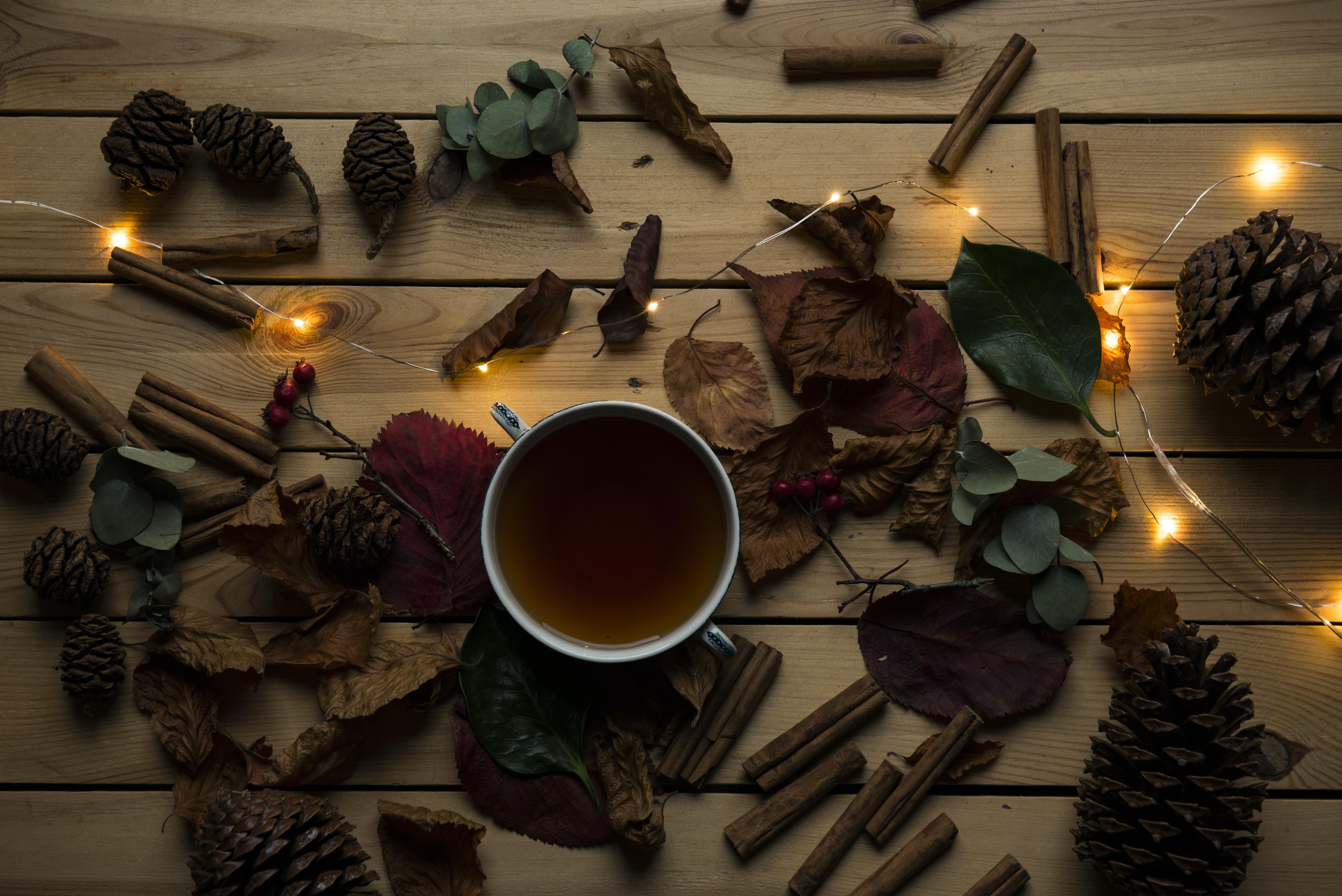 white ceramic mug ner dried leaves and orange string light
