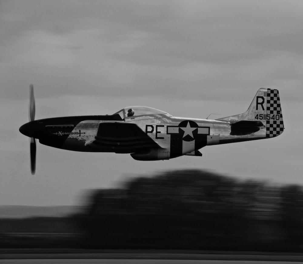 gray and black monoplane