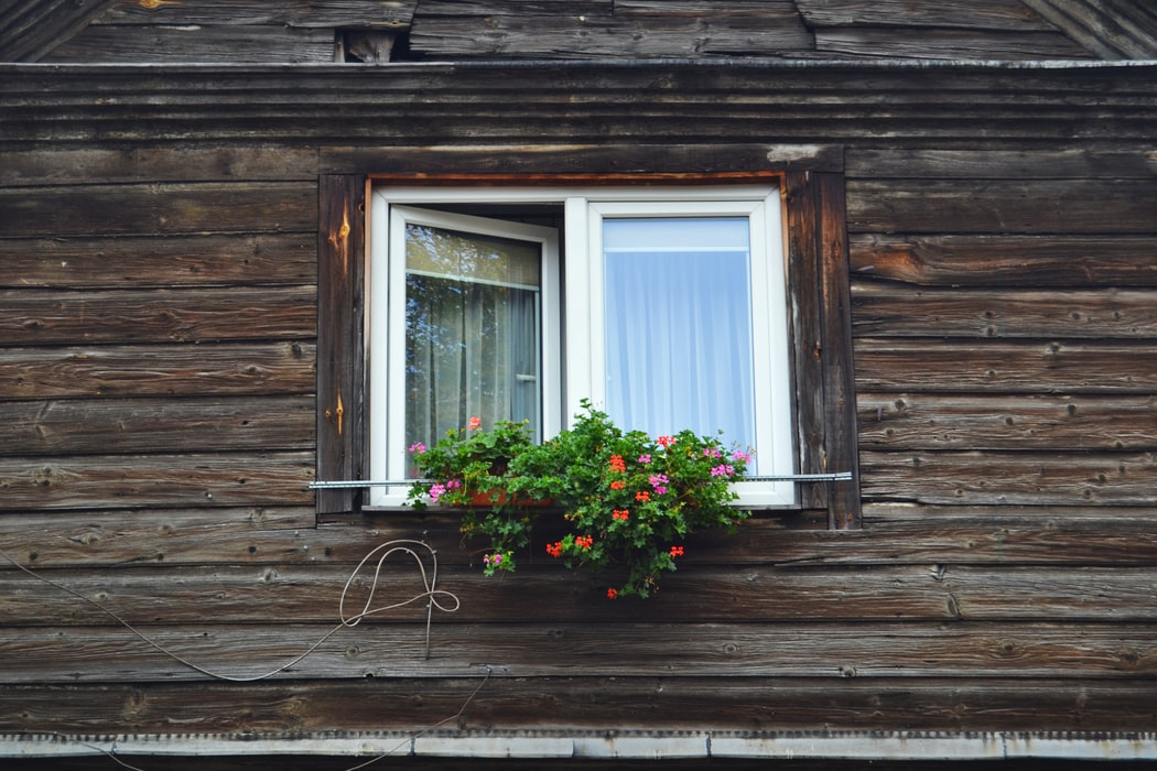 Camdaki Kız reyting