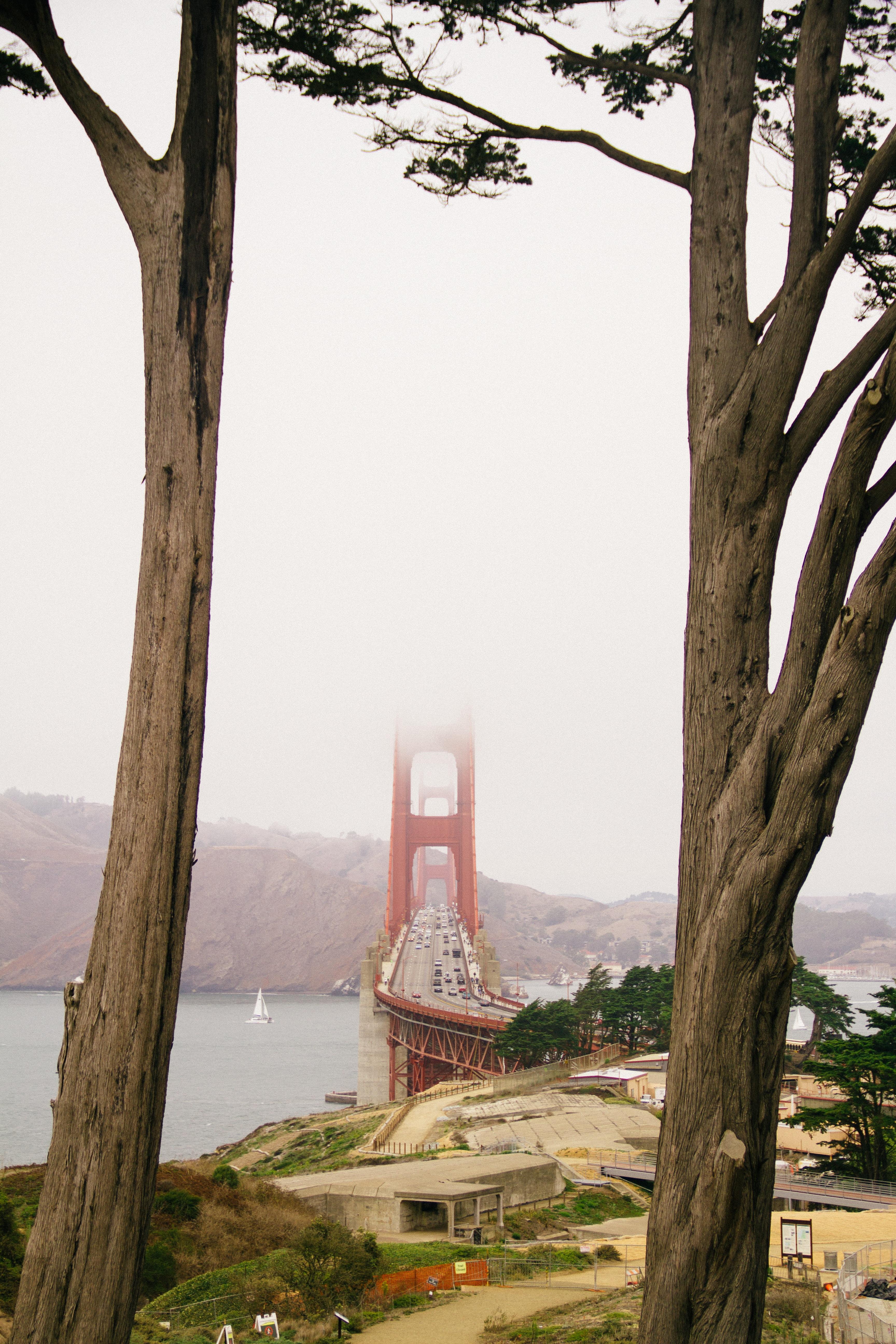 red and gray concrete string bridge