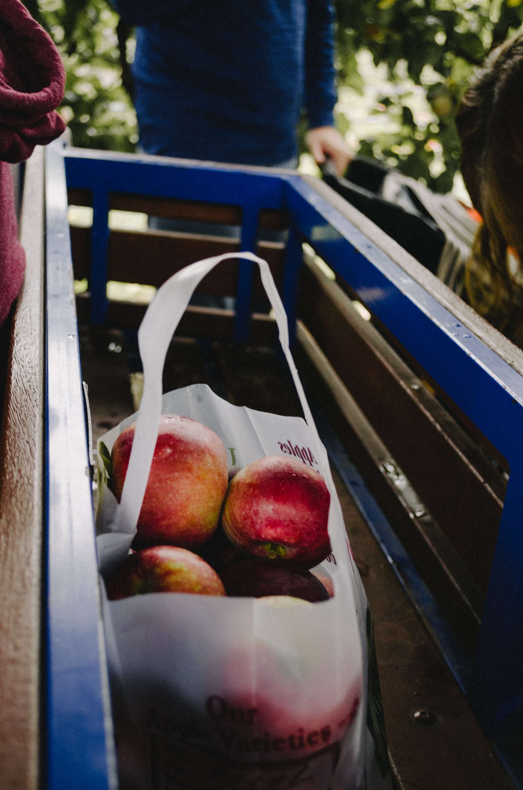 apples in plastic bag