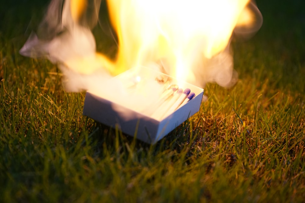 closeup photo of lighted matches on box placed on grass