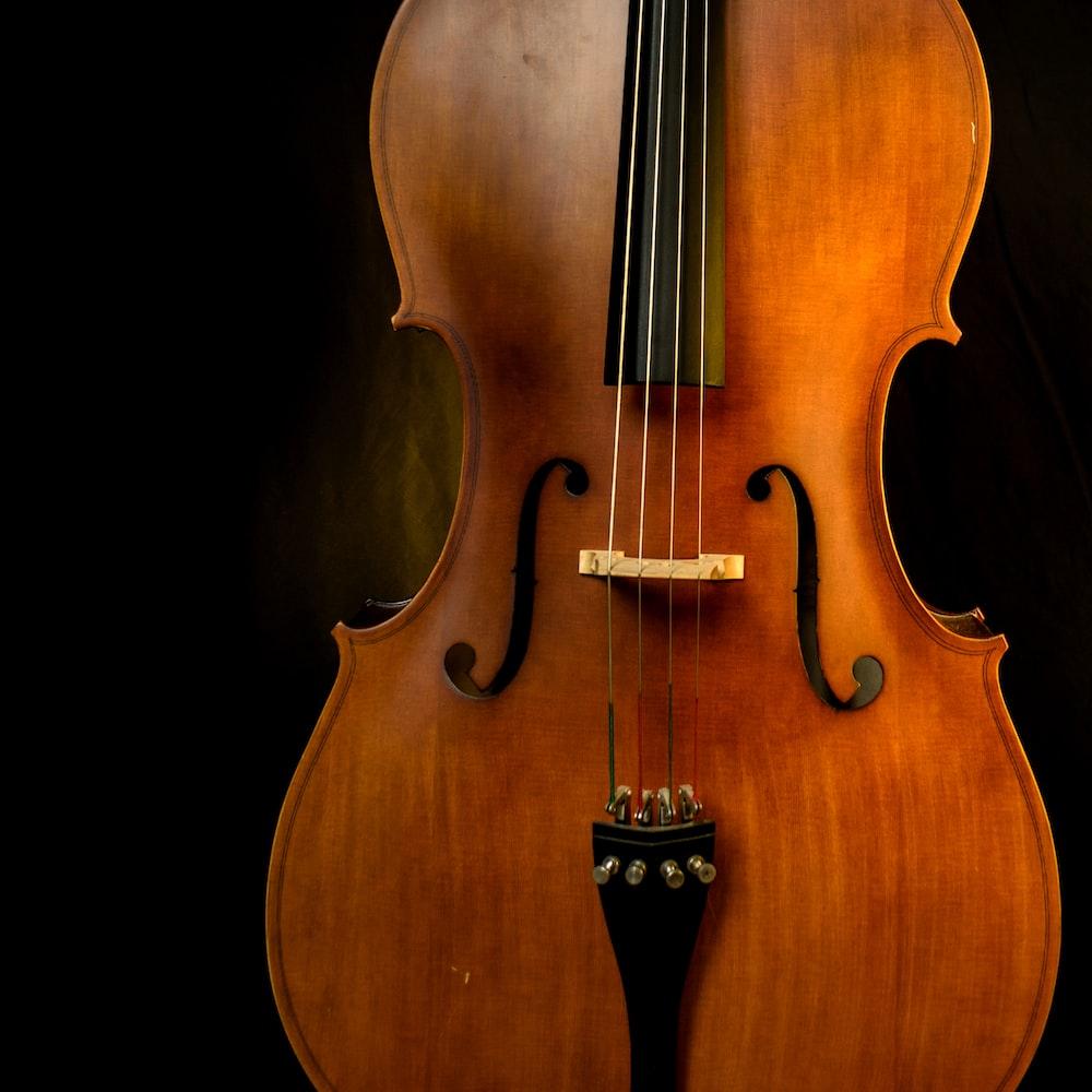 brown violin