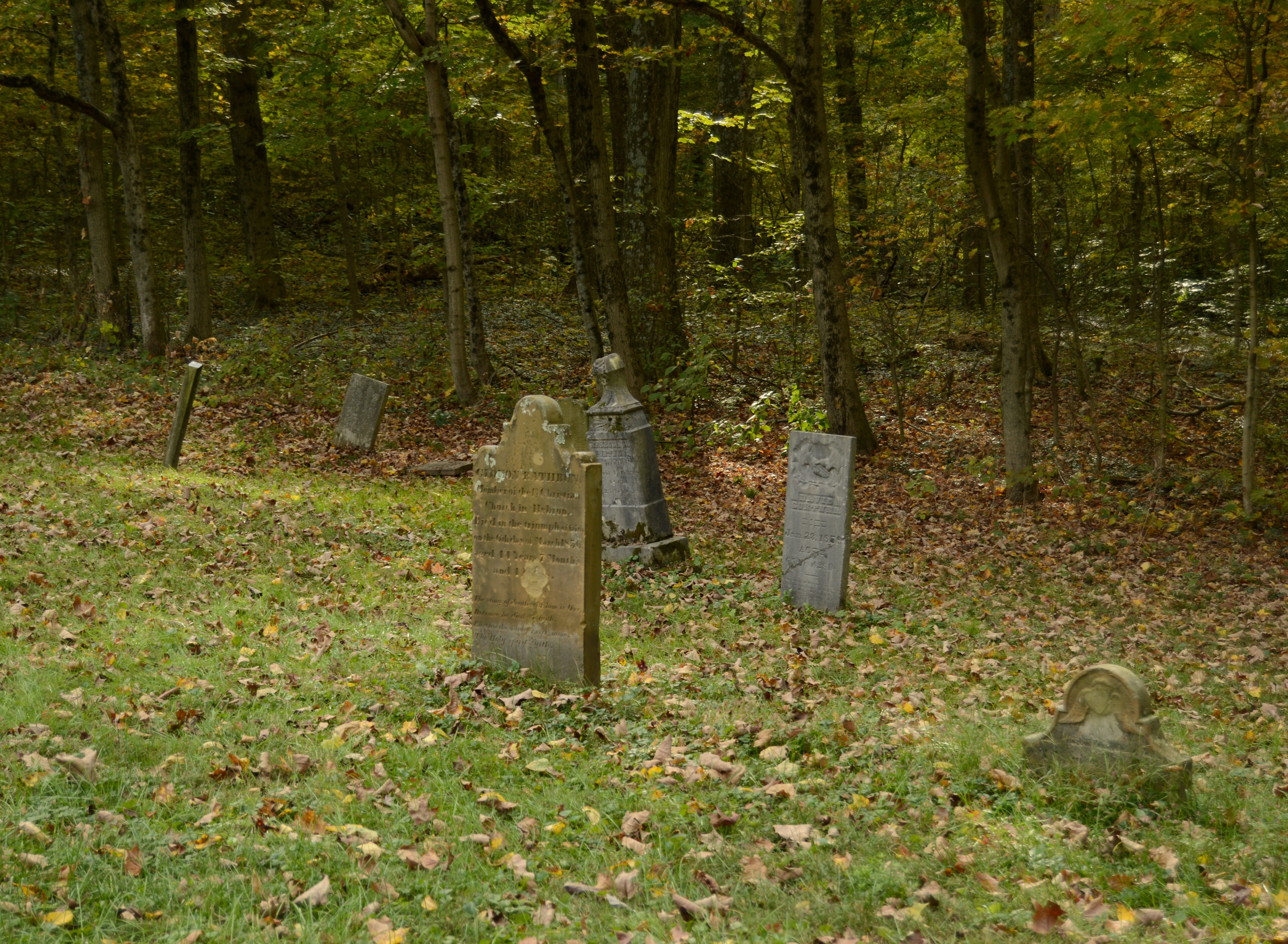 tombstones on greenfield at daytime