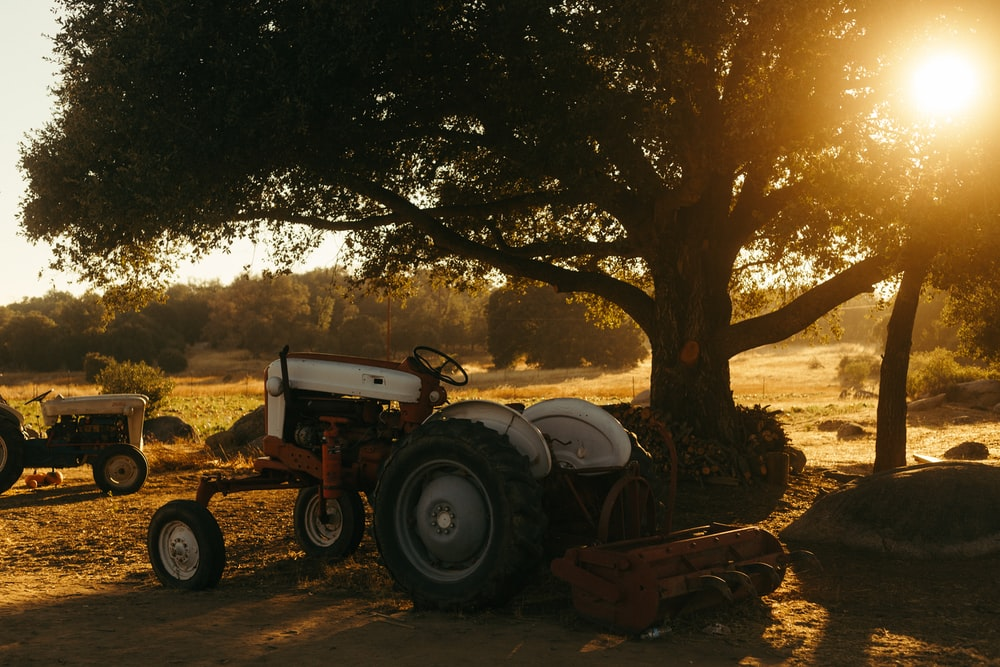 white tractor parked beside tree