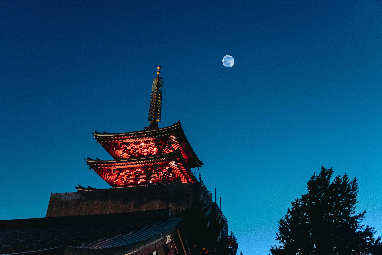 Pagoda under the moon
