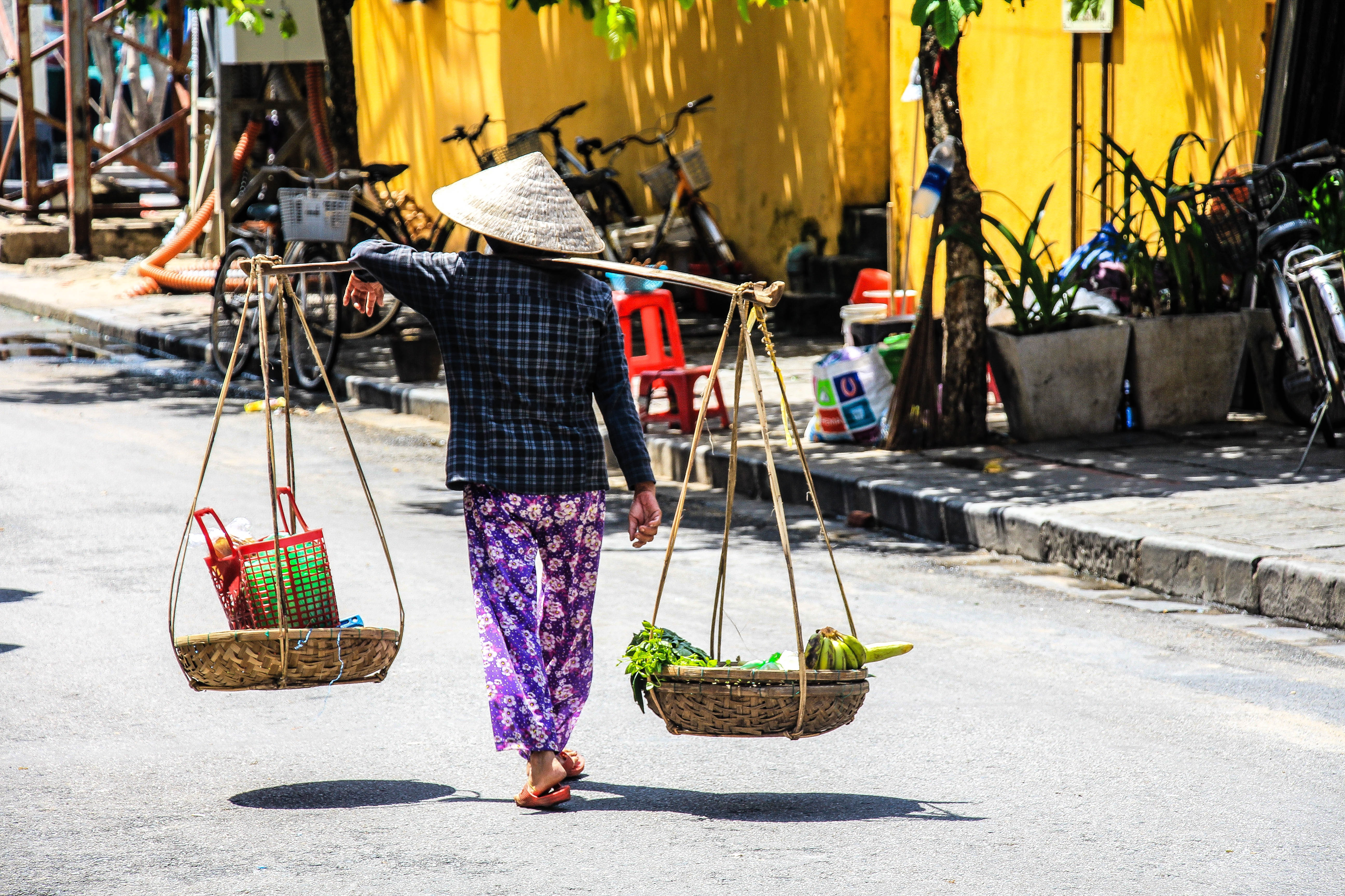 person carrying vegetables with basket