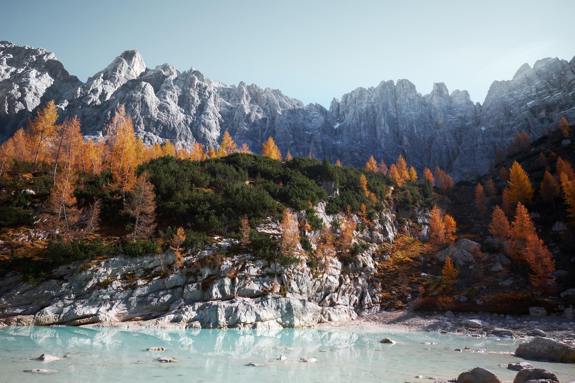 Фон с горами и осенним лесом для сайта и дизайна в высоком качестве