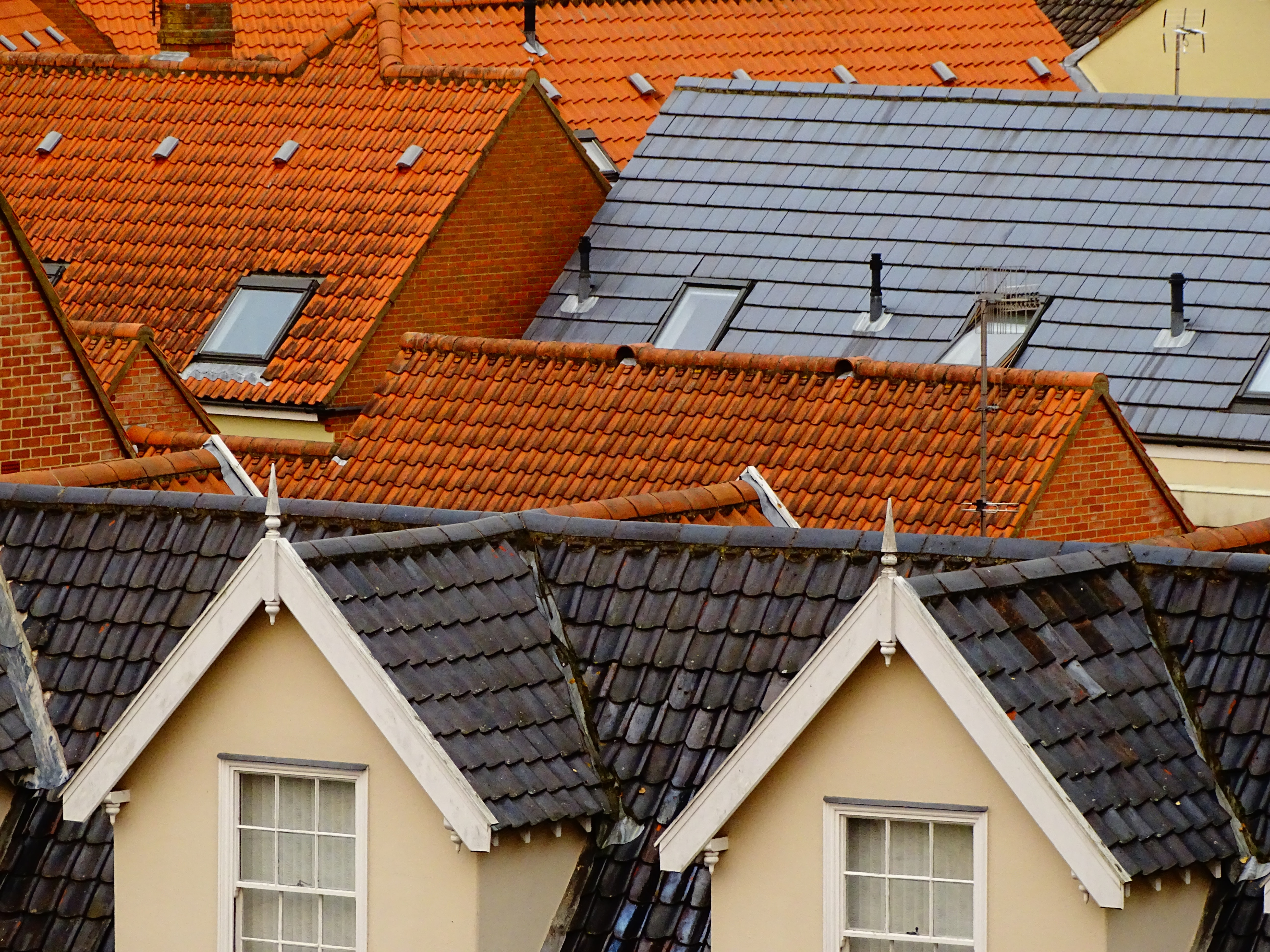 bird's eye view of assorted-color roof tiles