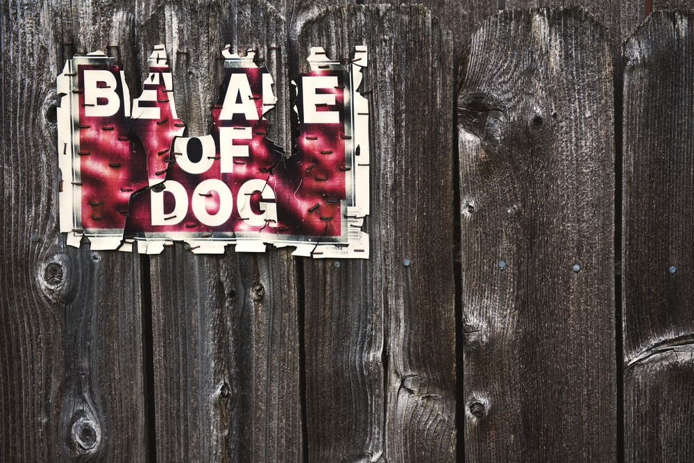 beware of dog sign on wood fence