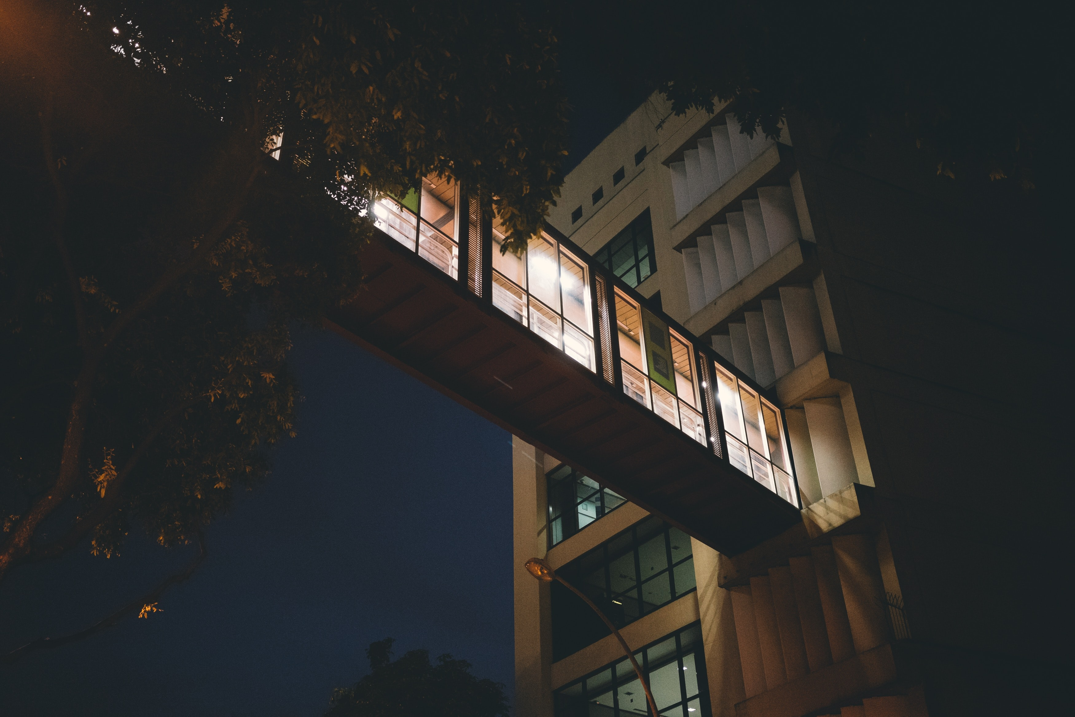 low-angle of lighted building beside tree