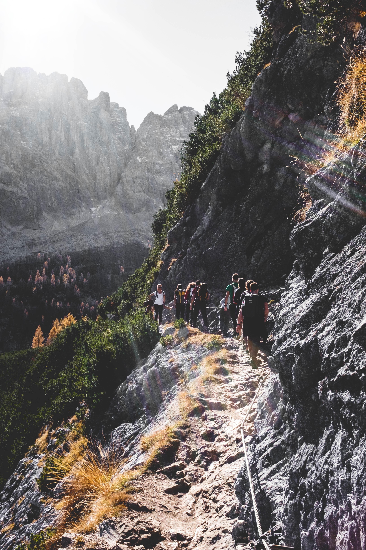 people walking on mountain road near trees