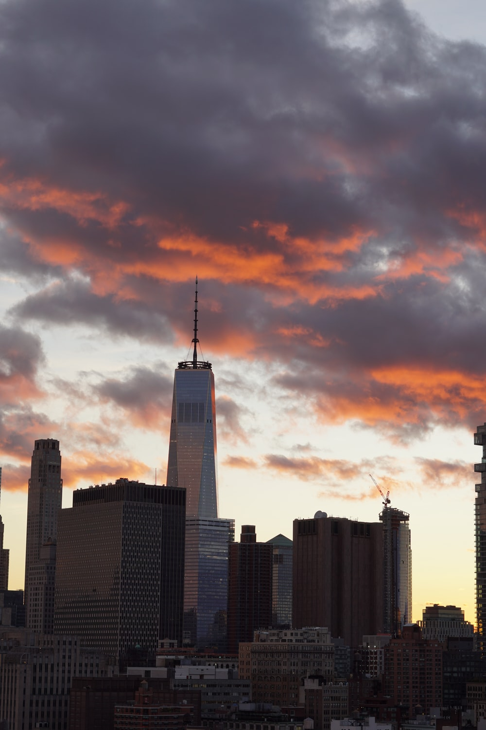 assorted tall buildings during sunset