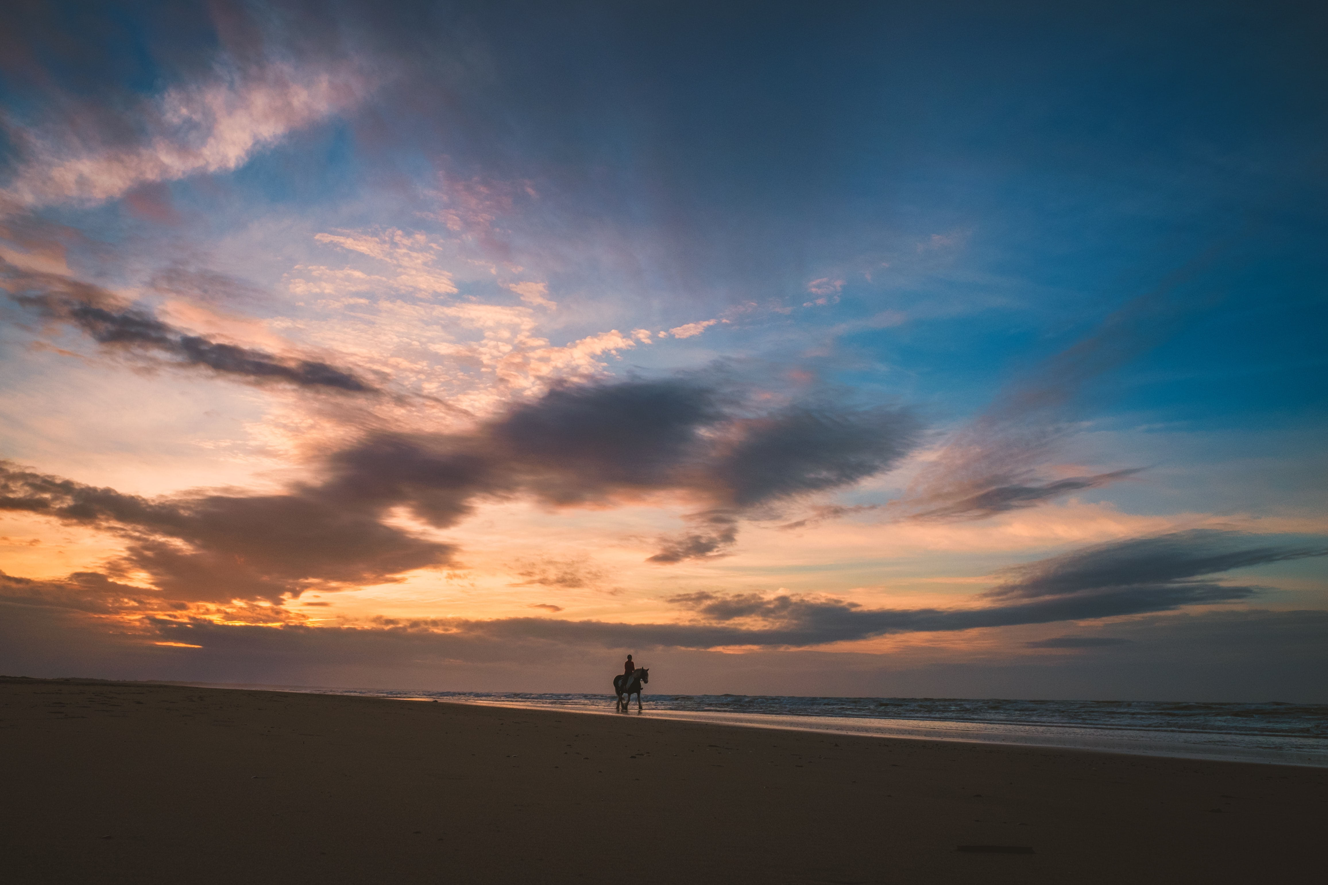 person riding horse at seashore near body of water under cloudy sky