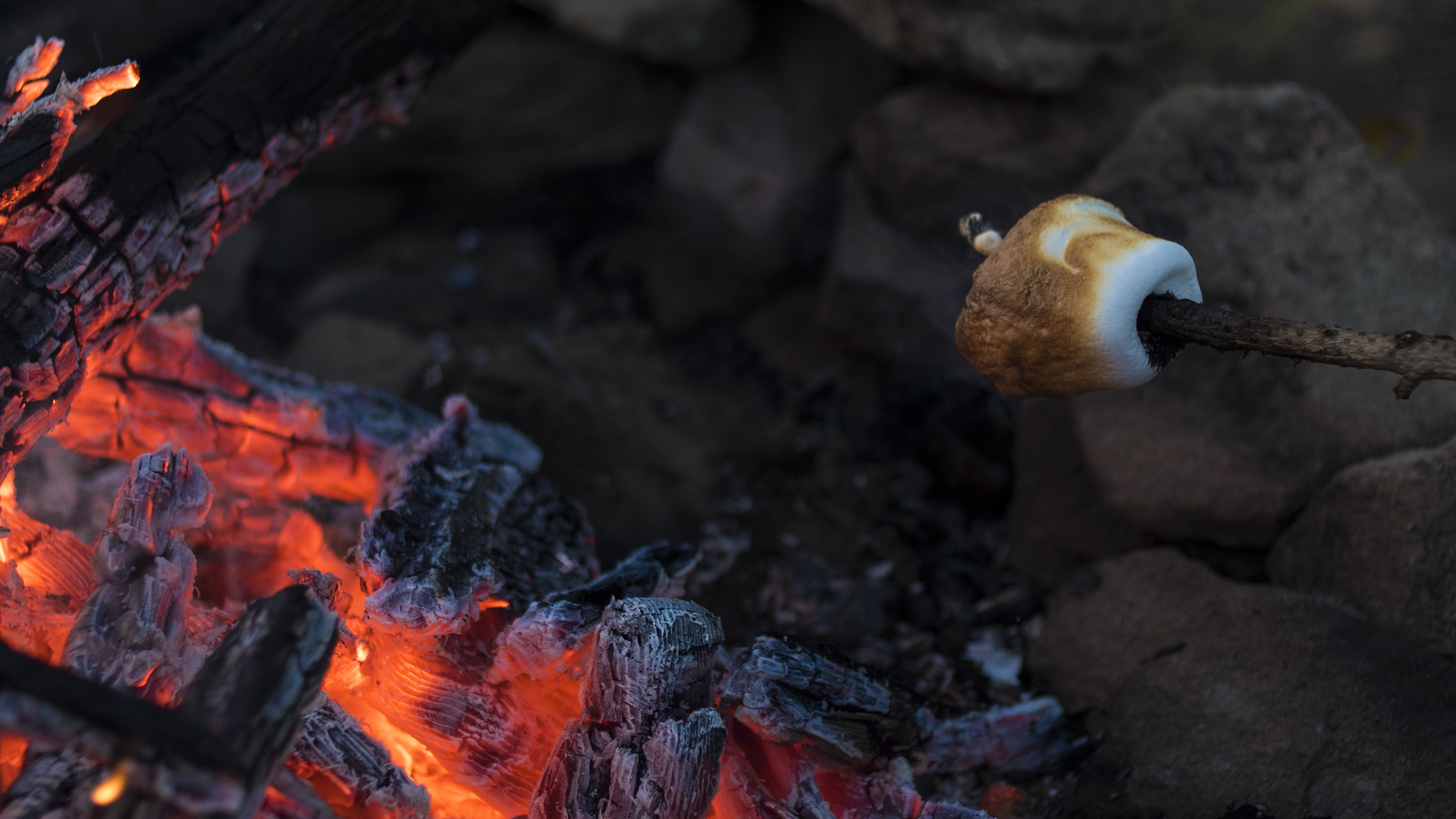 grilled marshmallow on fire pit