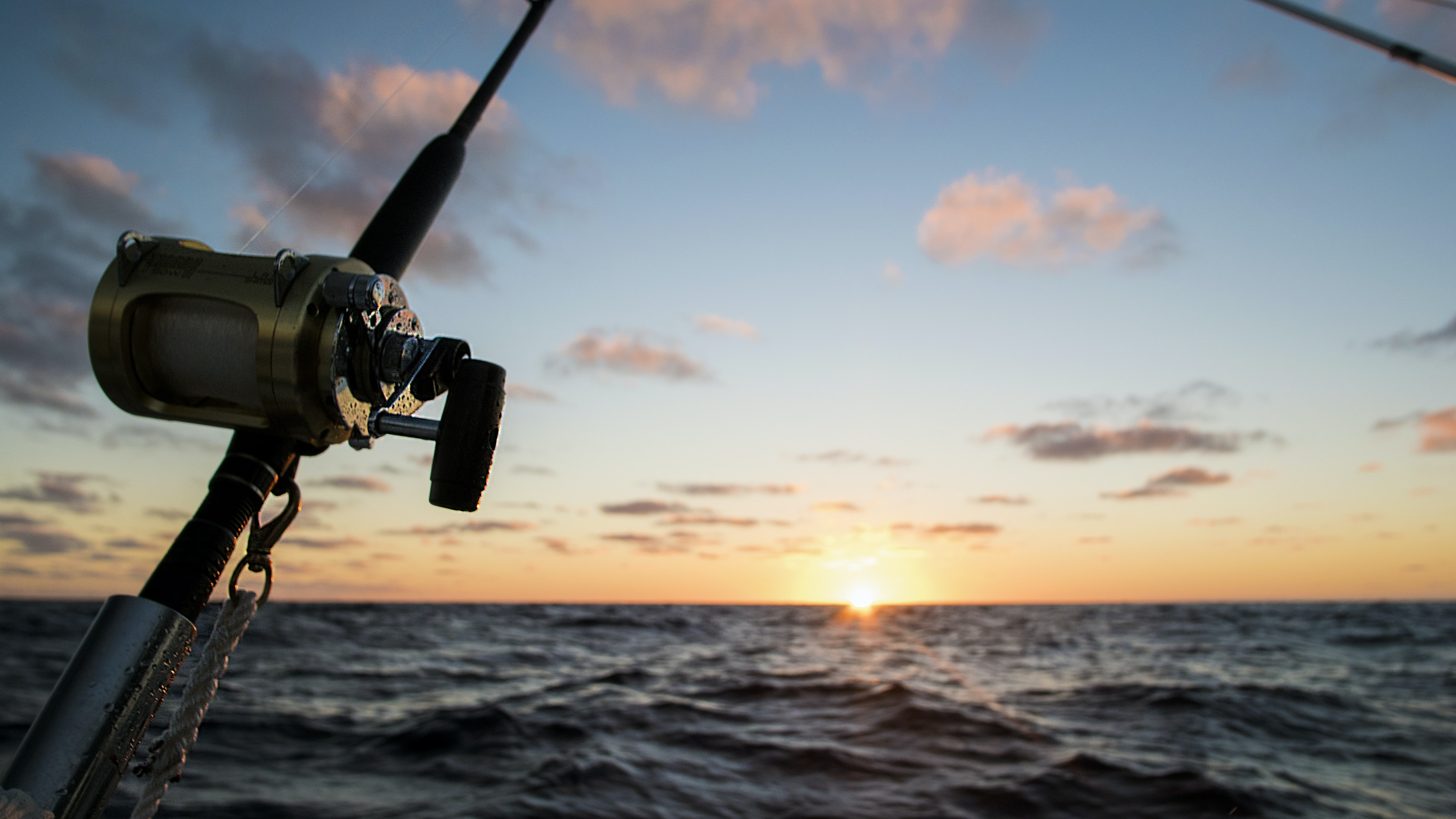 silhouette of fishing rod facing sunset