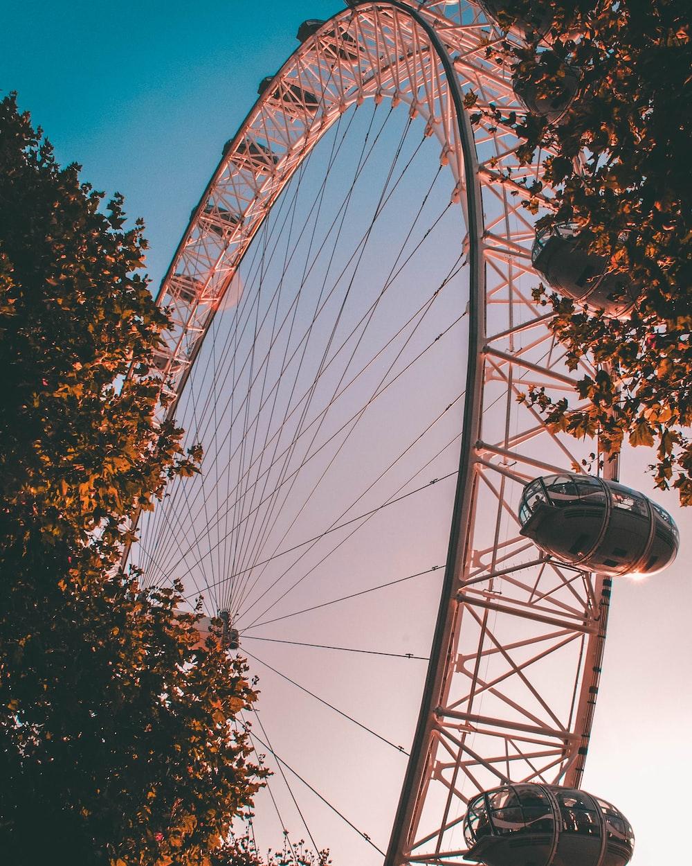ground shot of ferris wheel