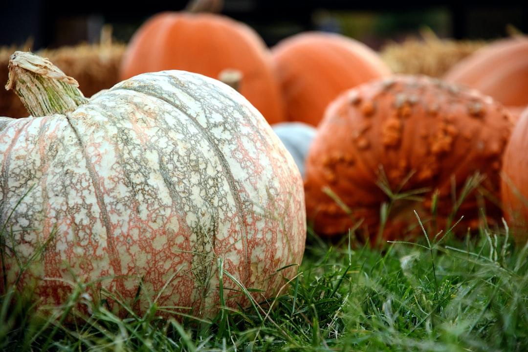 Heritage Pumpkins