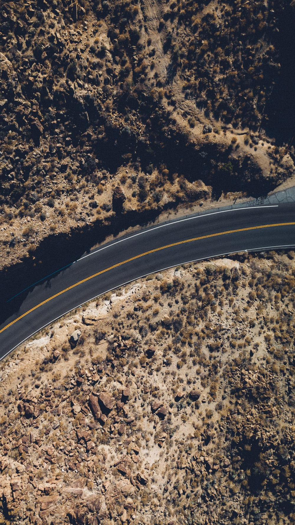 aerial view of road between tall trees at daytime
