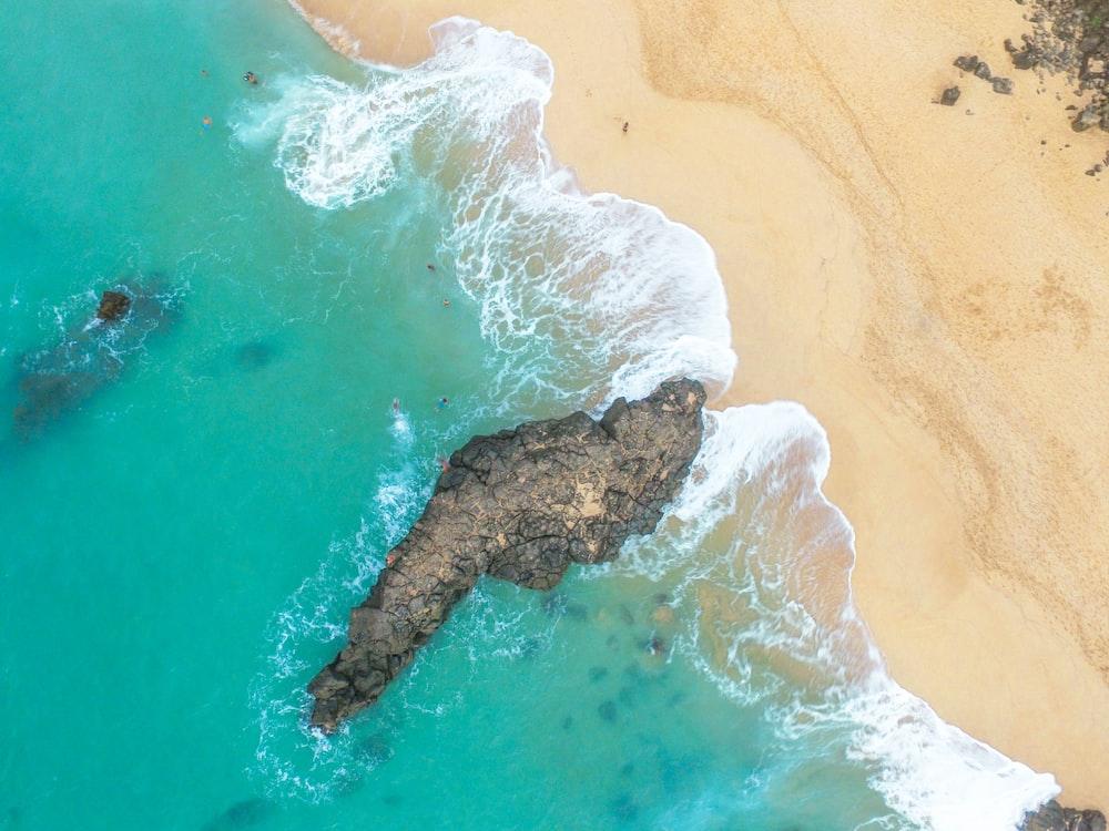 top view of rock on seashore