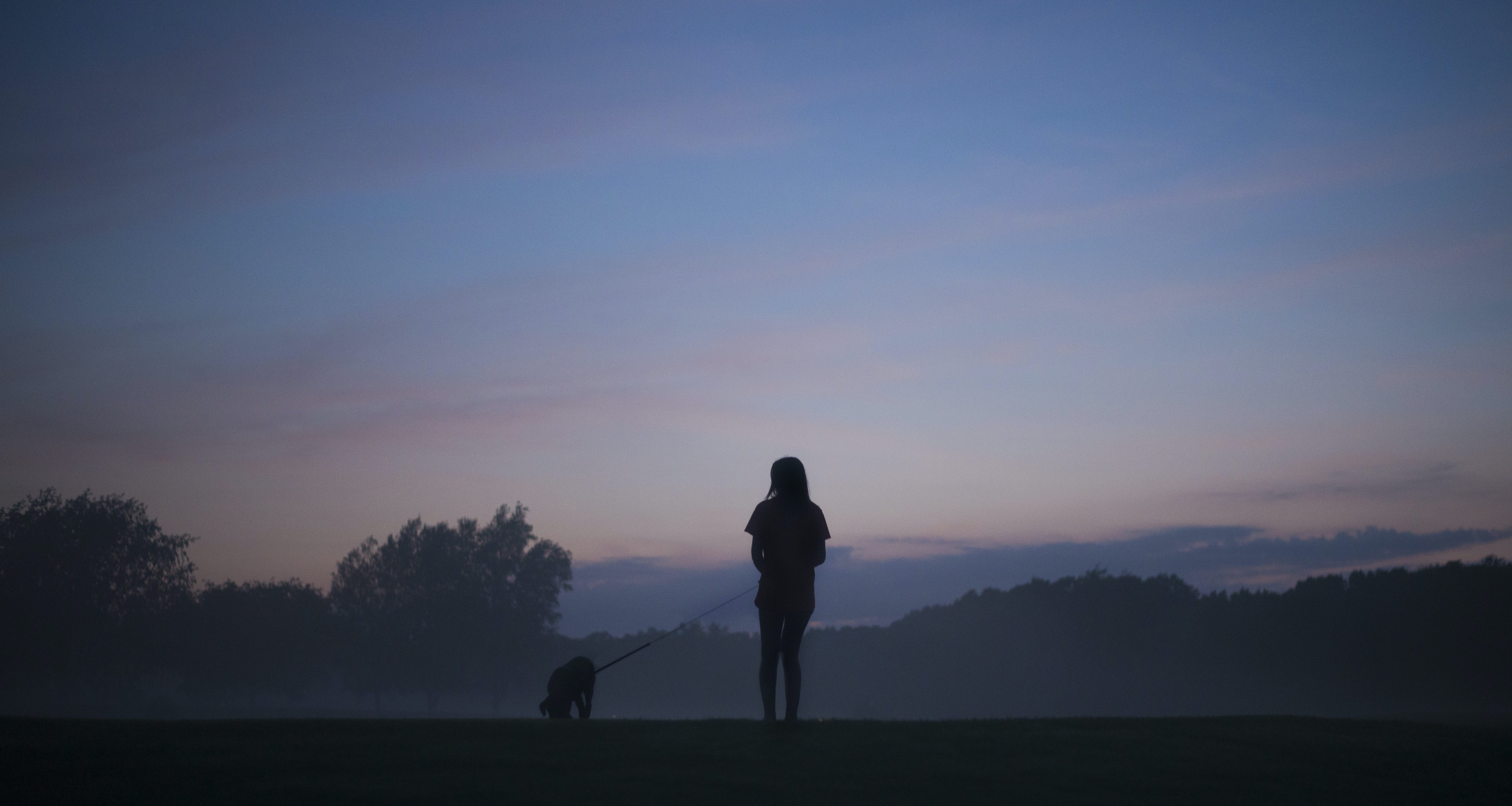 silhouette person standing holding dog