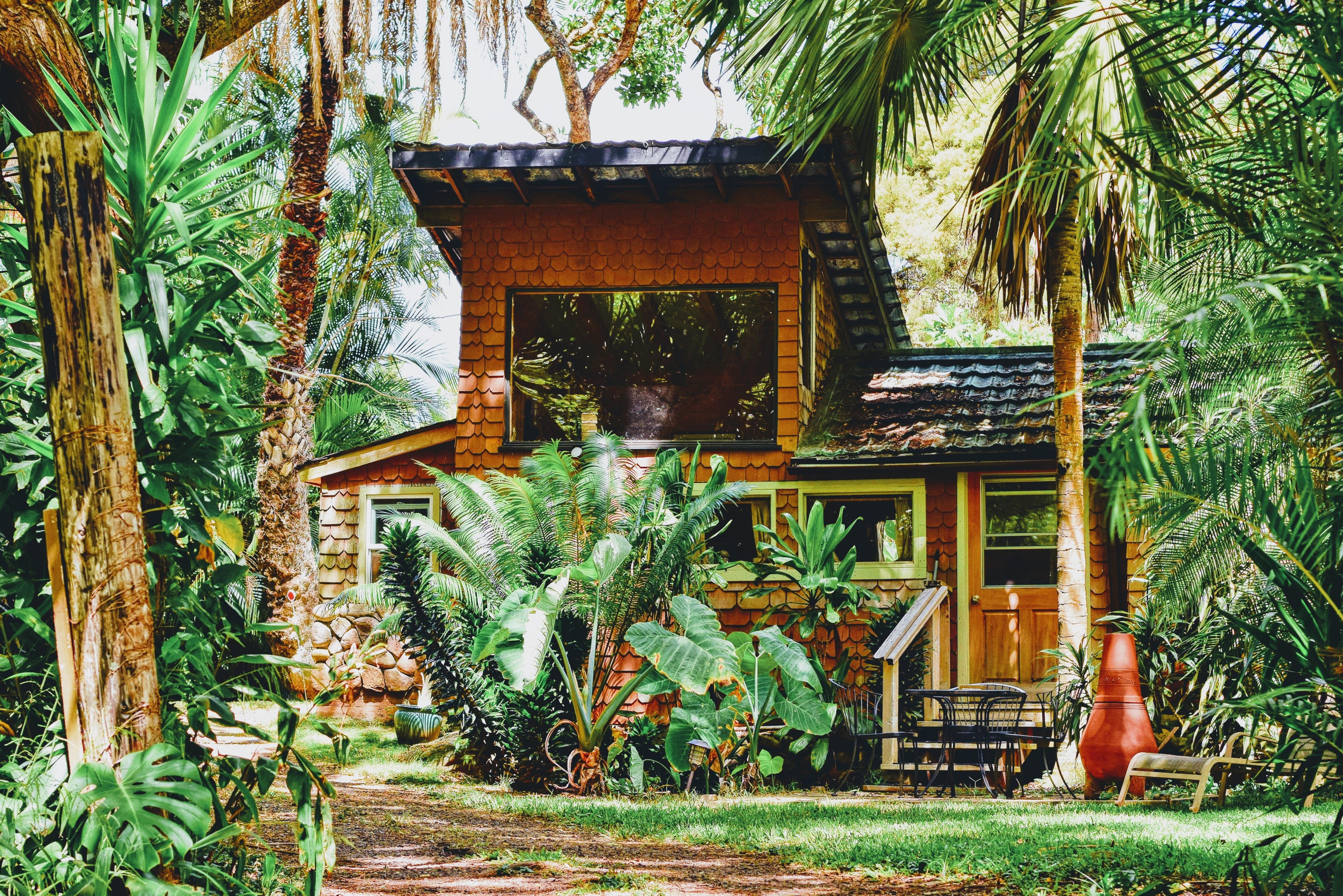 brown house near green trees