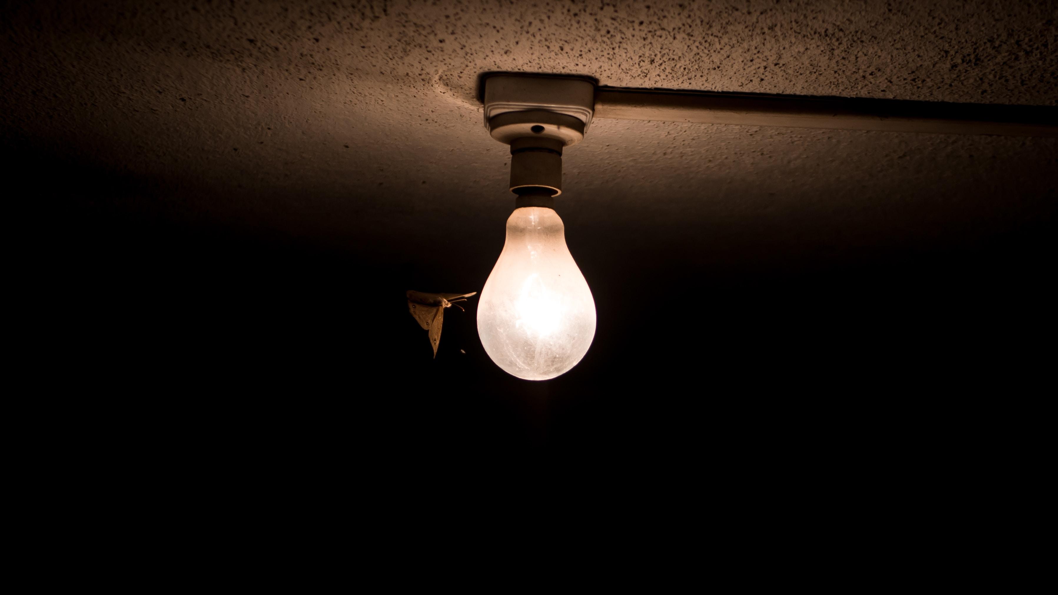 white light bulb covered by dark