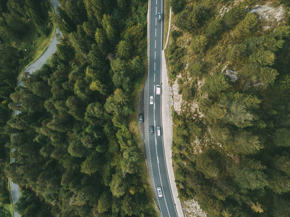 aerial photography of vehicle passing by highway between green trees
