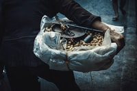 person holding bunch of peanut