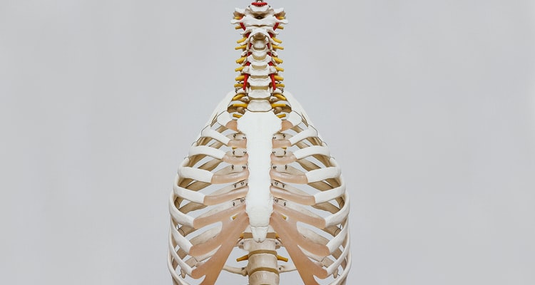 CBILS Case study: How a chiropractor's set up caused difficulties