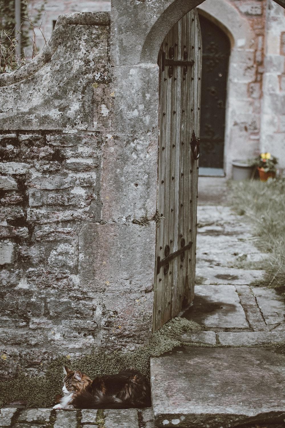 opened grey wooden door