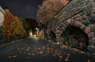 This is a longexposure shot taken in the Ullanlinna district, Helsinki. October night.