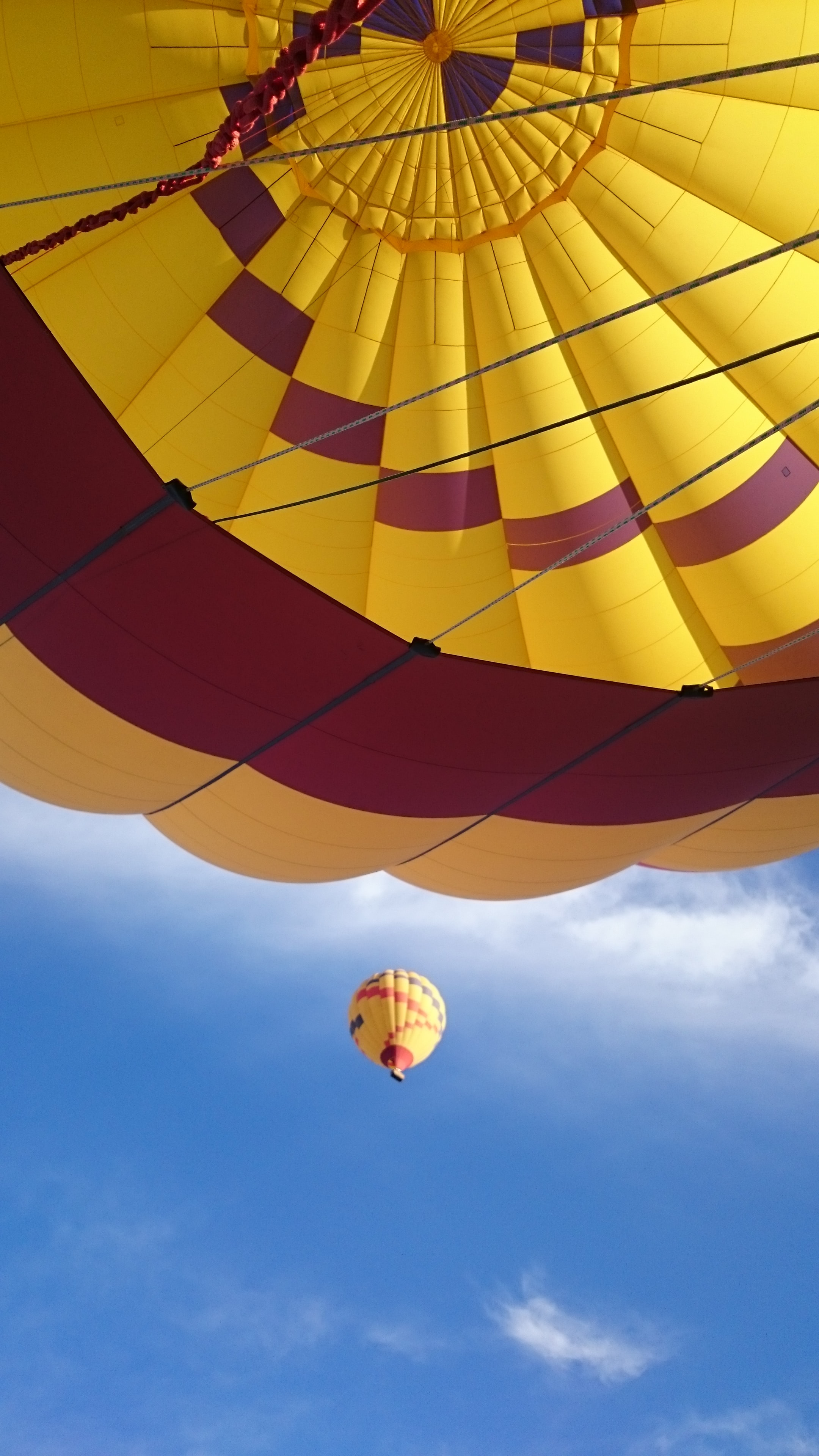 low angle photograph of yellow and red hot air balloon