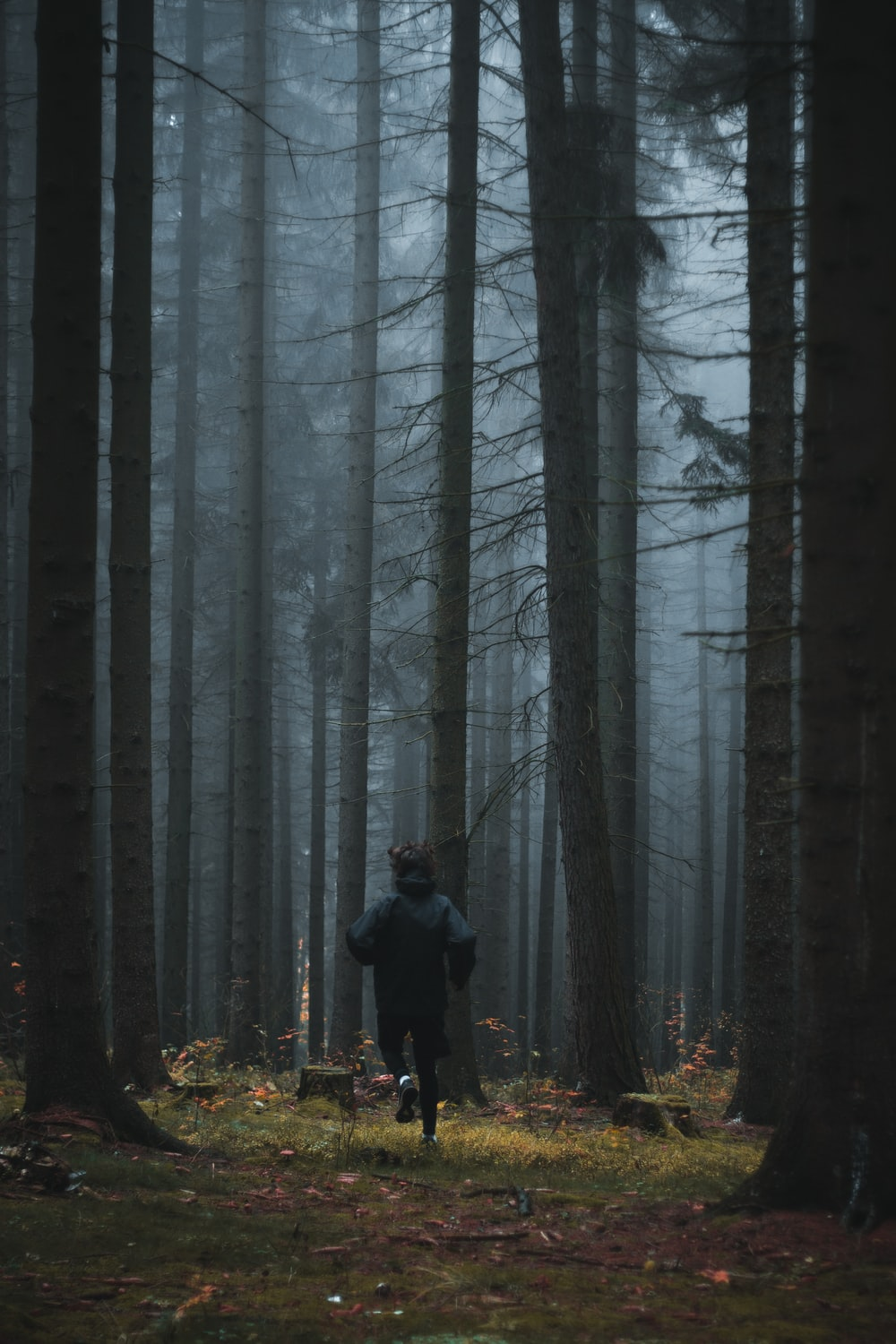 person running in forest trees with mist