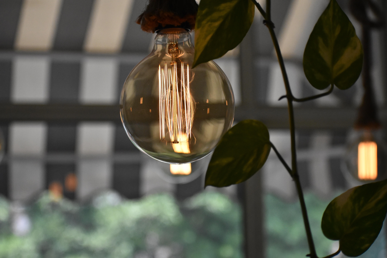 selective focus photograph of lightbulb
