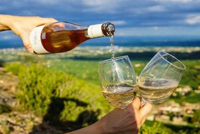 4681. Bor,szőlő, borászatok