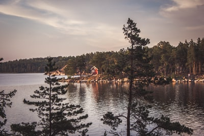 landscape photograph of body of water near forest sweden teams background