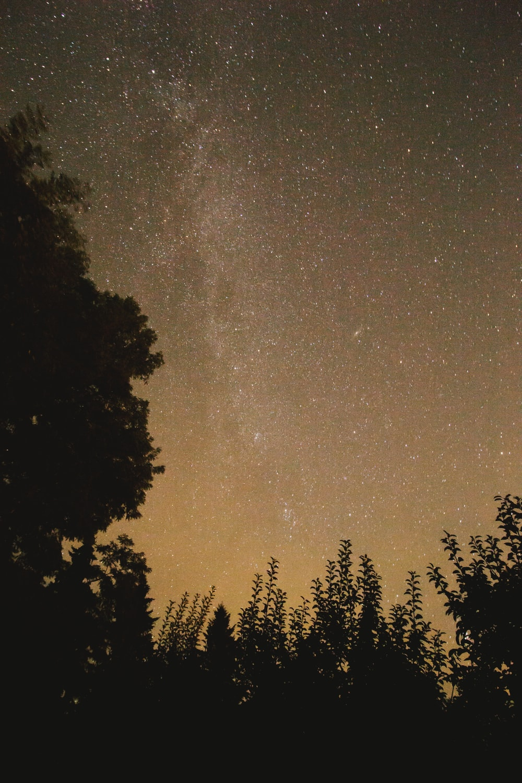 photo of stars during night