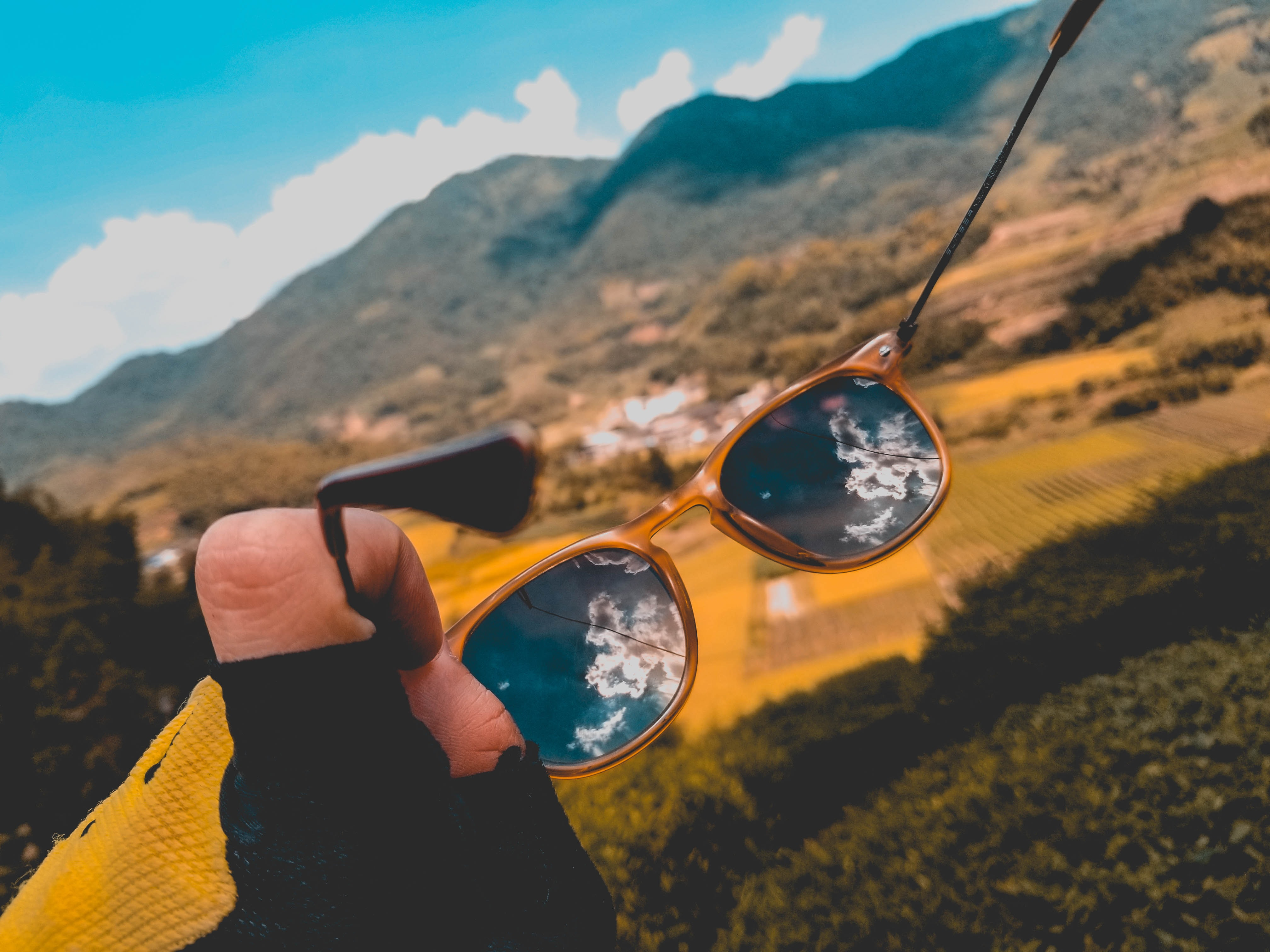 person holding brown framed sunglasses