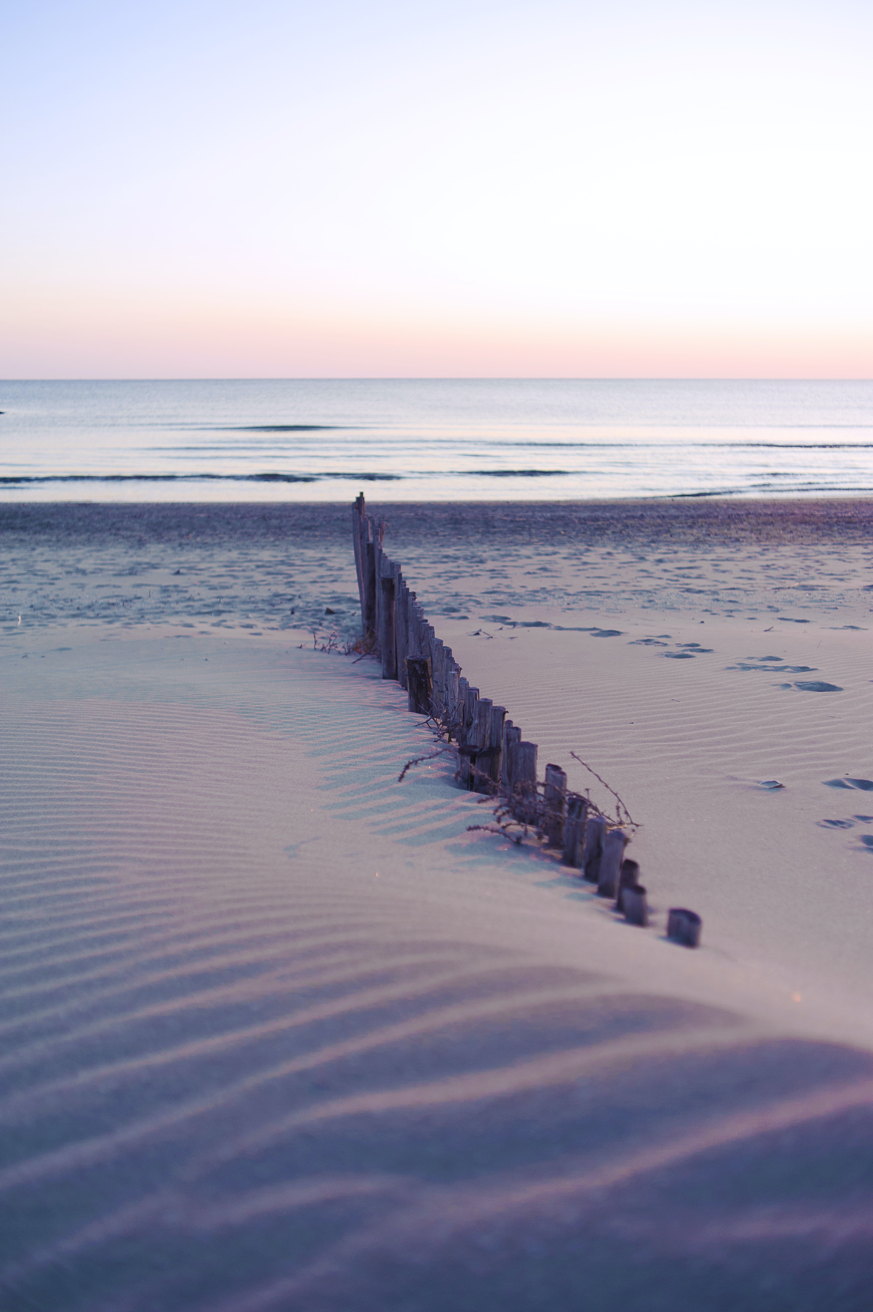 brown wooden fence on seashore at daytime