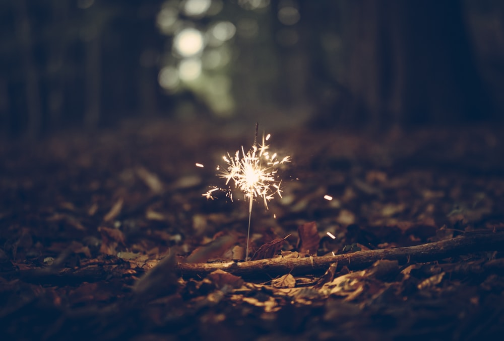 firework in the woods