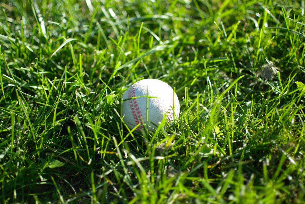 white baseball on top of green grass