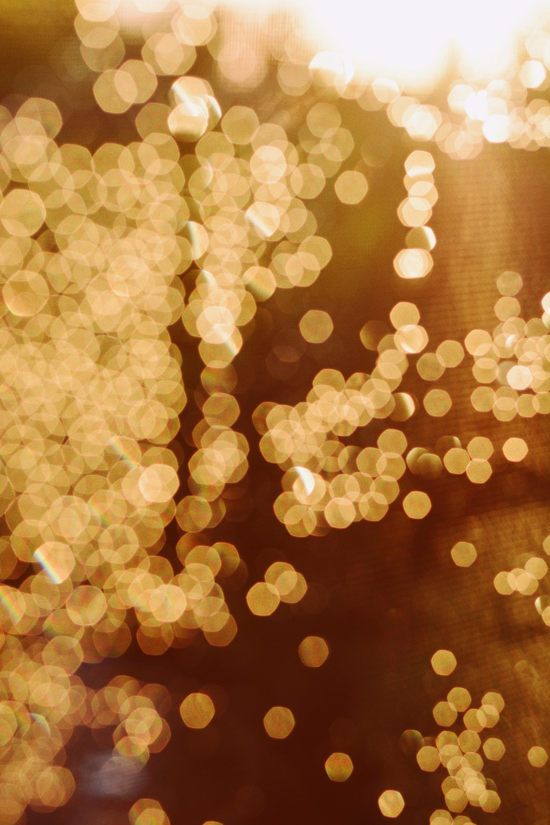 Best 20 Light Images Download Free Pictures On Unsplash