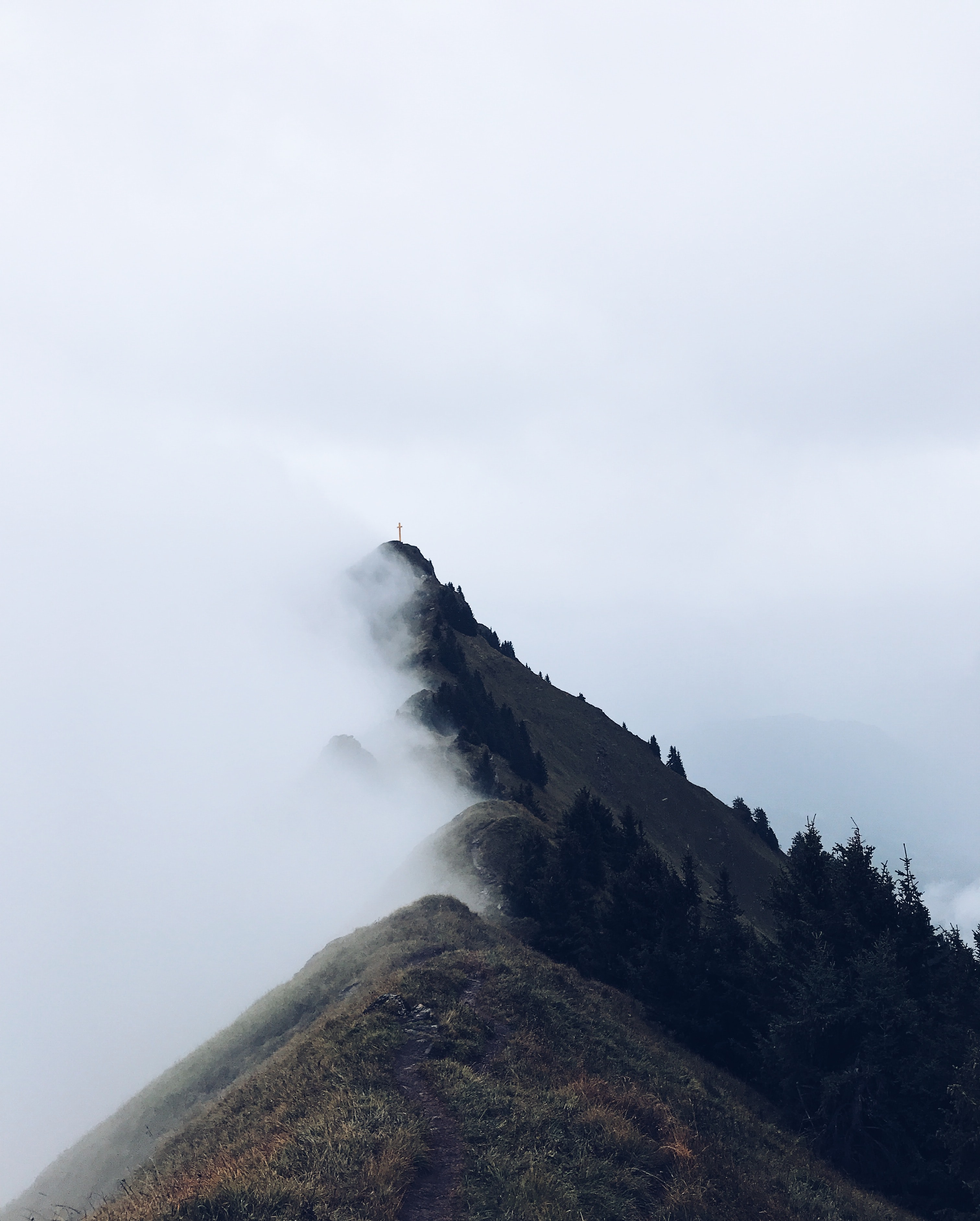 landscape photograph of mountain with fogs