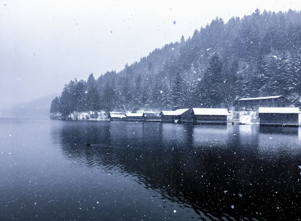 village beside body of water covered in snow