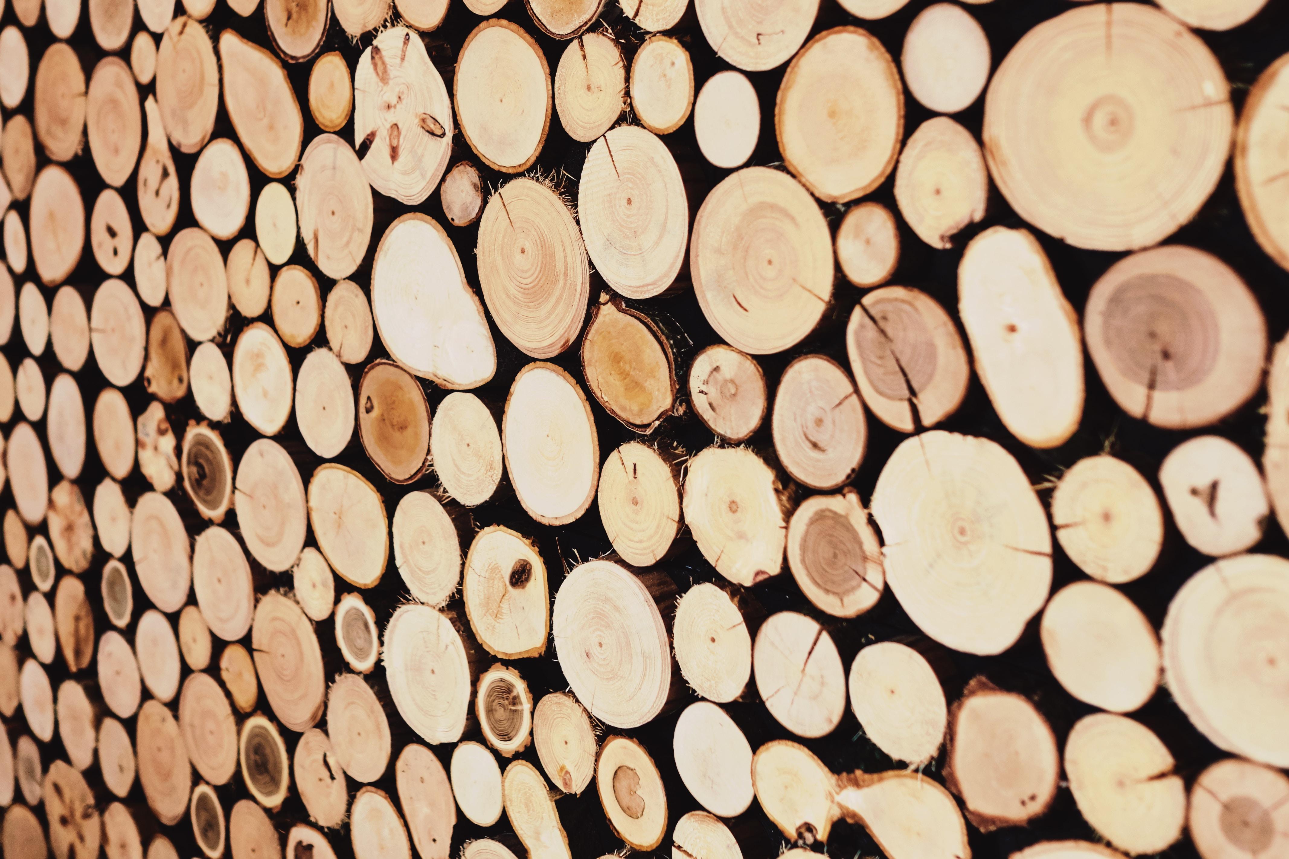 brown wood slab lot