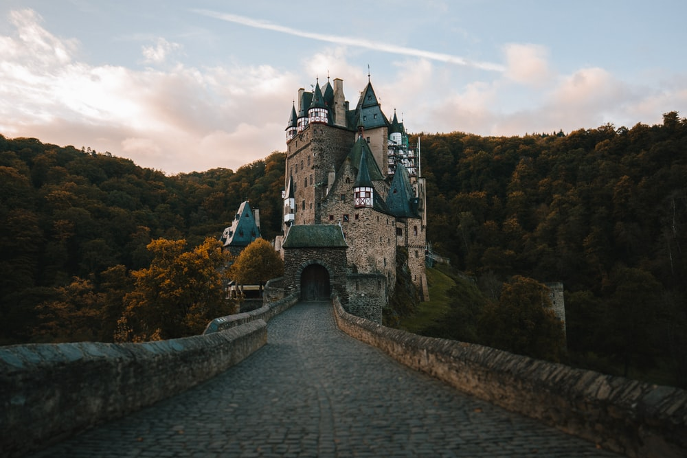 empty pathway towards castle